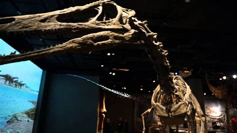 Ultimate Dinosaurs at the Science Museum of Minnesota