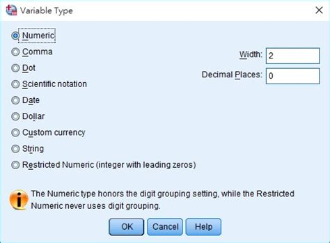 SPSS define variables in Variable View - Access-Excel
